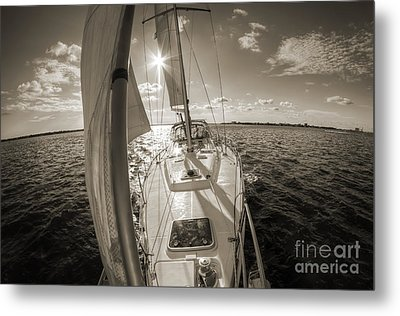 Sailboat Sailing Charleston South Carolina Metal Print