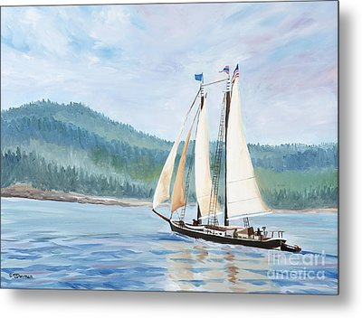 Sailing Into Castine Harbor Metal Print by Stella Sherman