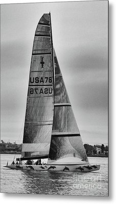 Sailing With Dolphins Metal Print by Mariola Bitner