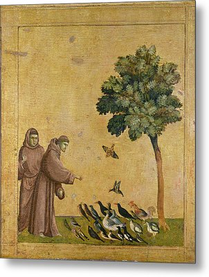 Saint Francis Of Assisi Preaching To The Birds Metal Print