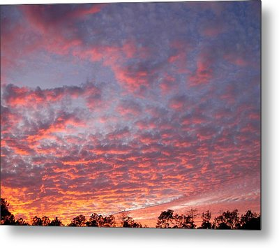 Metal Print featuring the photograph Salmon Sunset by Jeanne Kay Juhos