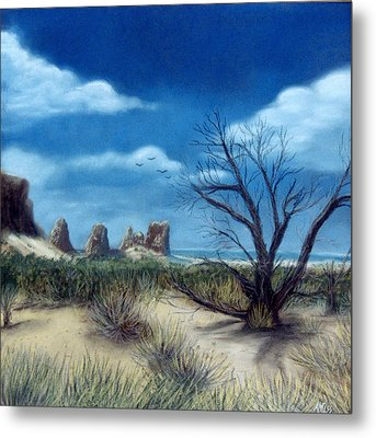 Salt Cedar At Arches Metal Print