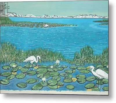 Metal Print featuring the painting Salt Marsh Egrets by Hilda and Jose Garrancho