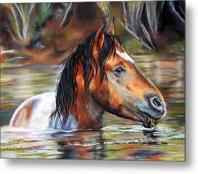 Metal Print featuring the pastel Salt River Tango by Karen Kennedy Chatham