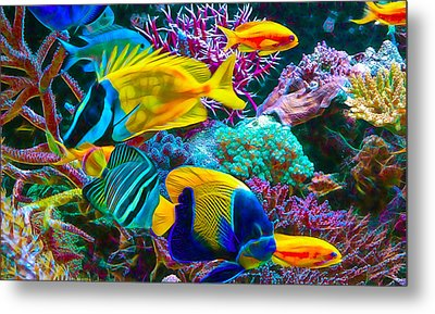 Saltwater Fish Collection Metal Print by Marvin Blaine