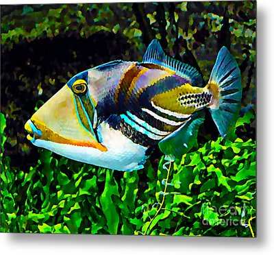 Saltwater Triggerfish Metal Print by Marvin Blaine