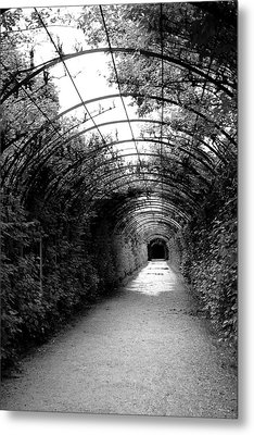 Salzburg Vine Tunnel - By Linda Woods Metal Print