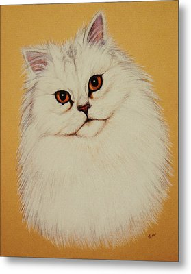 Sam - Persian Cat Metal Print by Lucy Deane