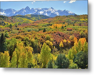Metal Print featuring the photograph San Juan Mountains From Dallas Divide by Ray Mathis