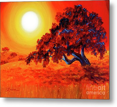 San Mateo Oak In Bright Sunset Metal Print by Laura Iverson