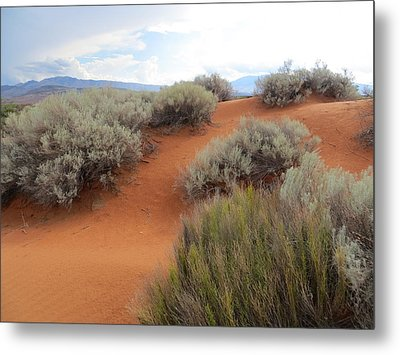 Sand And Sagebrush Metal Print