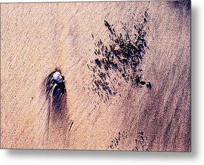 Metal Print featuring the photograph Sand Crab Marks 2 by Lyle Crump