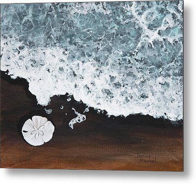 Sand Dollar Metal Print by Darice Machel McGuire