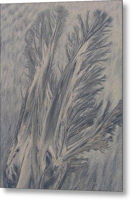 Sand Drawing 1 Metal Print by Kevin Callahan