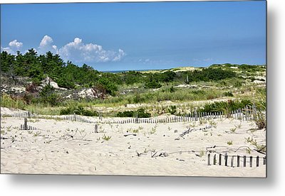 Metal Print featuring the photograph Sand Dune In Cape Henlopen State Park - Delaware by Brendan Reals
