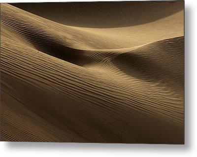 Sand Dune Metal Print by Phil Crean