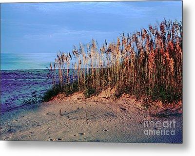 Sand Dune Sea Oats Sunrise Outer Banks Metal Print by Dan Carmichael