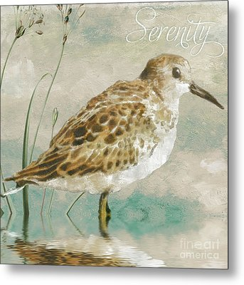 Sandpiper I Metal Print by Mindy Sommers
