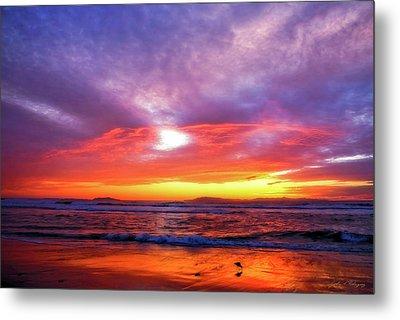 Sandpiper Sunset Ventura California Metal Print