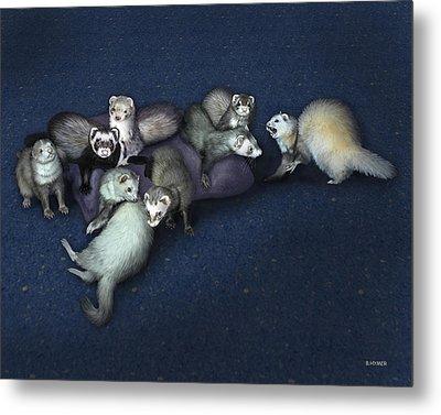 Sandy's Ferrets Metal Print by Barbara Hymer