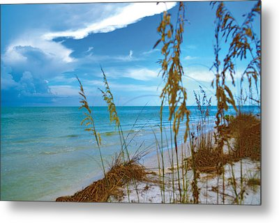 Metal Print featuring the photograph Sanibel Sea Oats by Timothy Lowry