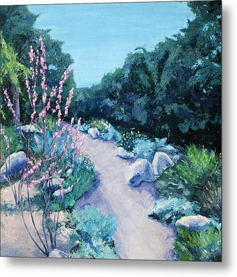 Santa Barbara Botanical Gardens Metal Print by M Schaefer