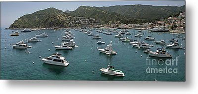 Santa Catalina Metal Print by Jim Chamberlain