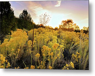 Metal Print featuring the photograph Santa Fe Magic by Stephen Anderson
