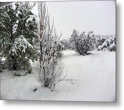 Santa Fe Snowstorm 2017 Metal Print