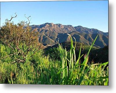 Metal Print featuring the photograph Santa Monica Mountains Green Landscape by Matt Harang