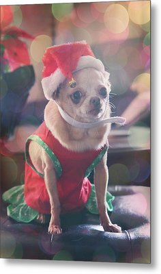 Santa's Little Helper Metal Print by Laurie Search