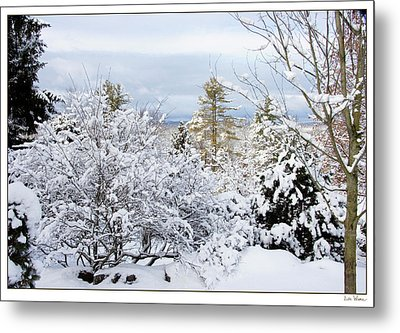 Saratoga Winter Scene Metal Print by Lise Winne