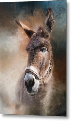 Lil Sassafrass Metal Print by Robin-Lee Vieira