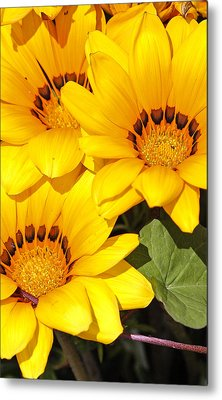 Metal Print featuring the photograph Satin Yellow Florals by E Faithe Lester