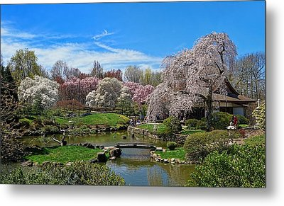 Saturday In The Park Metal Print by Lanis Rossi