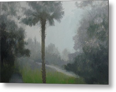 Savanna Fog Metal Print by Robert Rohrich