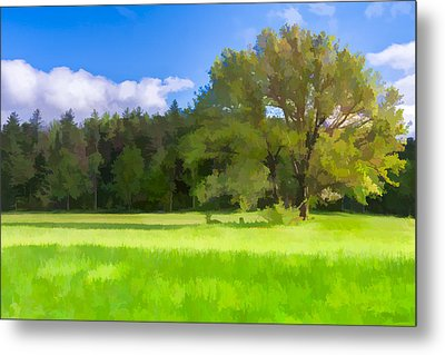 Save My Tree  II Metal Print by Jon Glaser