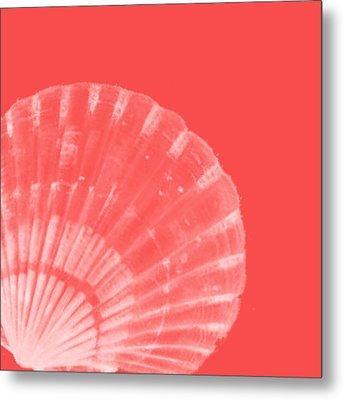 Scallop Shell Metal Print by Bonnie Bruno