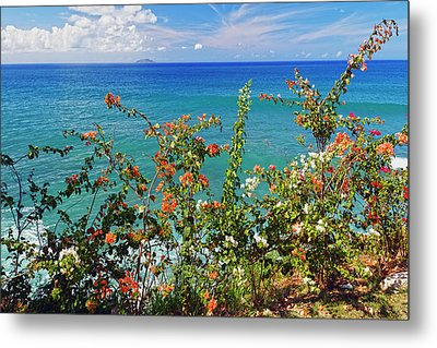 Scenic Coastal View With The Desecheo Island Metal Print by George Oze