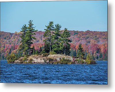 Metal Print featuring the photograph Scenic Fall View by Paul Freidlund