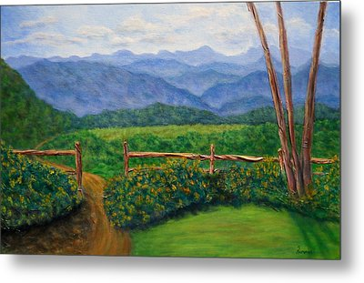 Scenic Overlook Metal Print by Sandy Hemmer