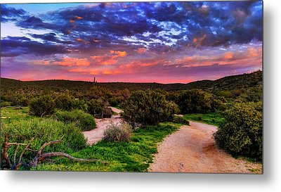 Metal Print featuring the photograph Scenic Trailhead by Anthony Citro