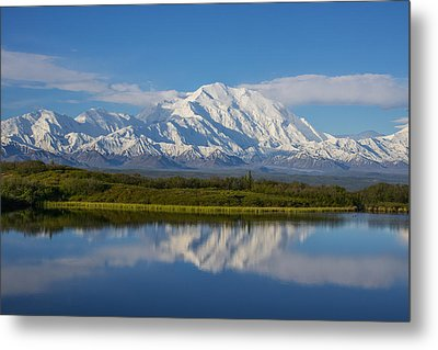 Scenic View Of Mt. Mckinley Reflecting Metal Print