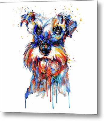 Schnauzer Head Metal Print by Marian Voicu