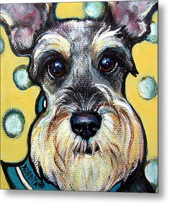 Schnauzer With Polkadots Metal Print by Rebecca Korpita