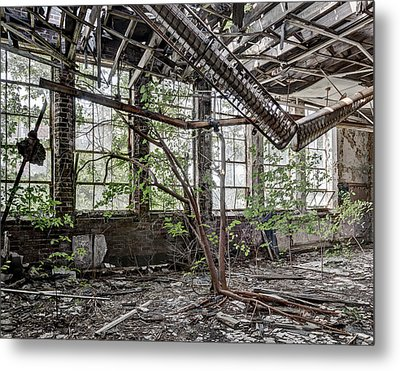Schoolroom Tree Metal Print by Robert Myers