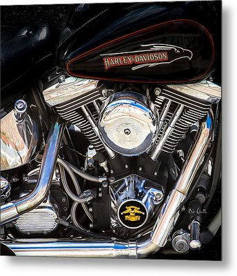 Screaming Eagle  Metal Print by Bob Orsillo