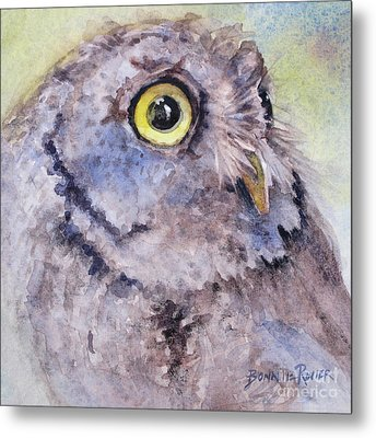 Metal Print featuring the painting Screech Owl by Bonnie Rinier