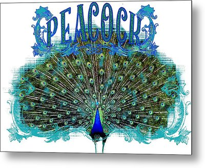 Scroll Swirl Art Deco Nouveau Peacock W Tail Feathers Spread Metal Print