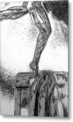 Metal Print featuring the drawing Sculpted by Barbara Giordano
